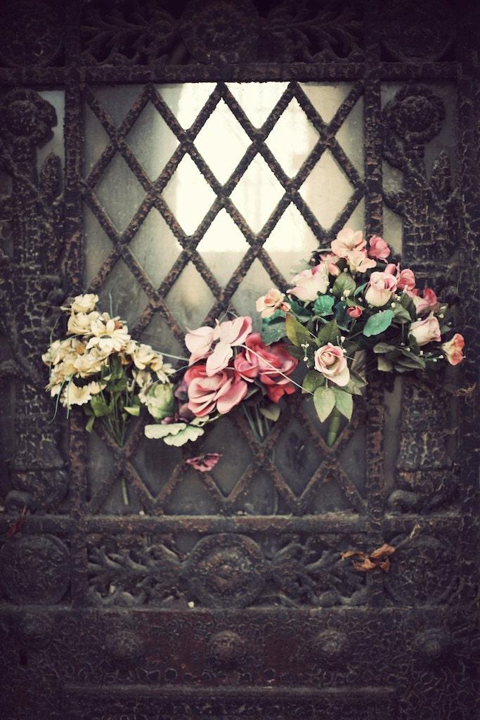 Père Lachaise, Paris Door, Flowers, Roses Pink Pastel colours, Art Decor, Interior Wall Art, size 8 x 12 inches - AilbhePhotography