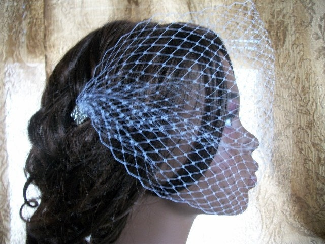 Glam White Bandeau Style Birdcage Veil With Rhinestone Pins