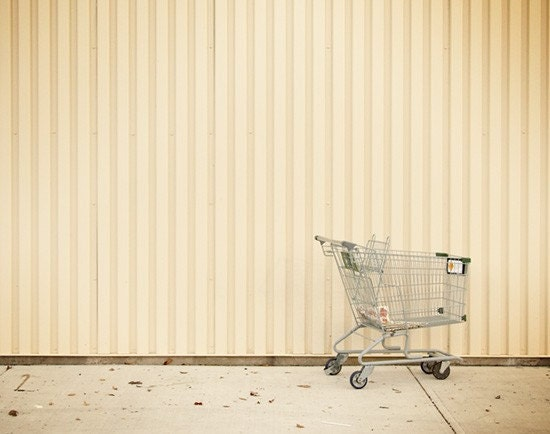 Shopping Cart - 3.75x3 Photographic Print Matted to 10x8