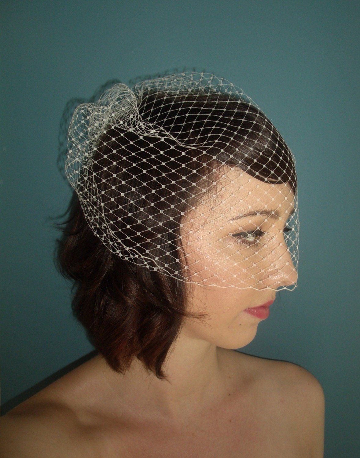 birdcage veil 14 inch by TessaKim on Etsy from etsy.com
