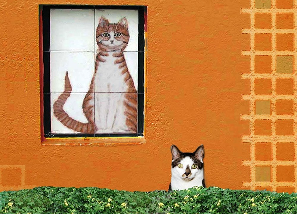 Cat Lover Note Cards- Set of 5 cat note cards- The Perfect Spot