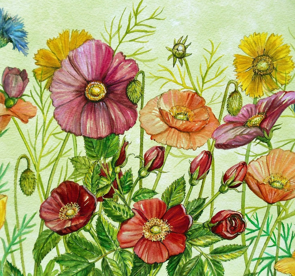 Spring Wildflowers Original Watercolor Flower Frenzy