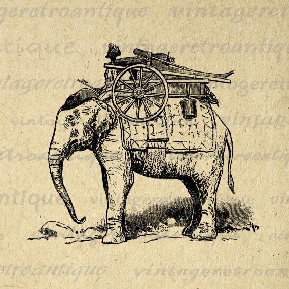 vintage elephant clip art - photo #8