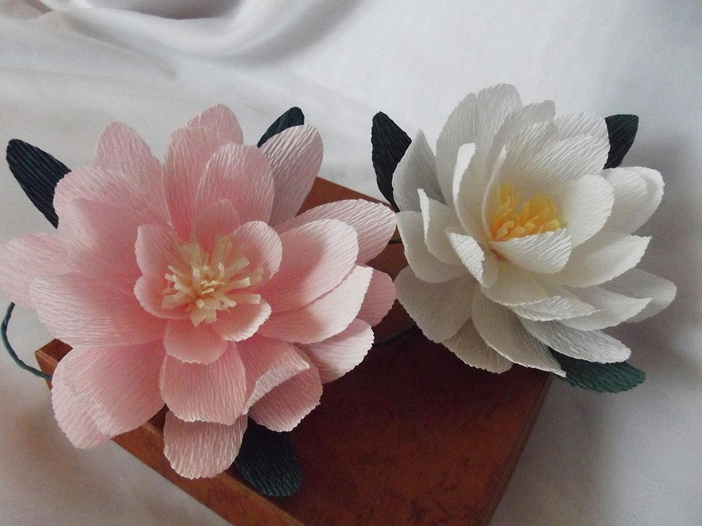 Lotus Designs Florist  53 Photos amp 66 Reviews  Florists