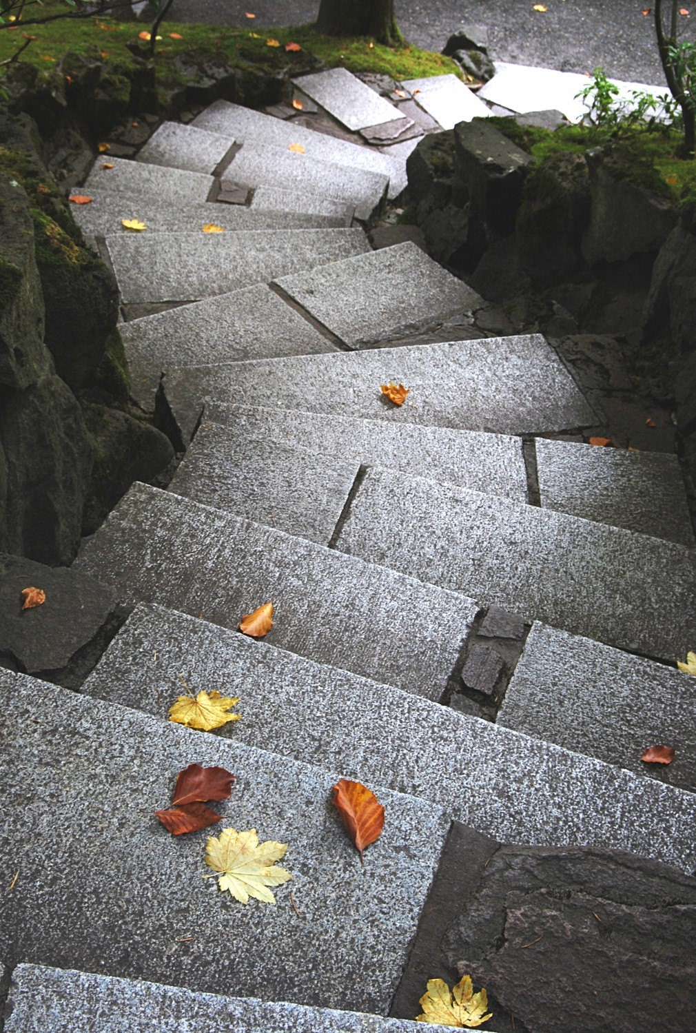 Steps Japanese Garden Fine Art  Digital Photographic Print 11x17 - sueolsonphoto