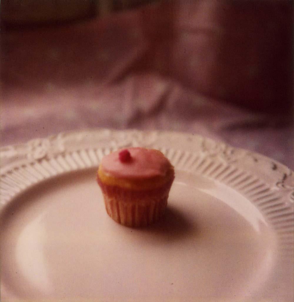 Cupcake 8 x 8 Polaroid Print