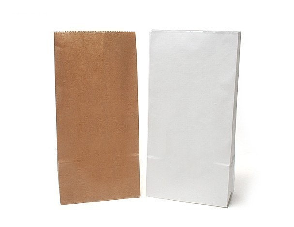 100 natural kraft paper bags