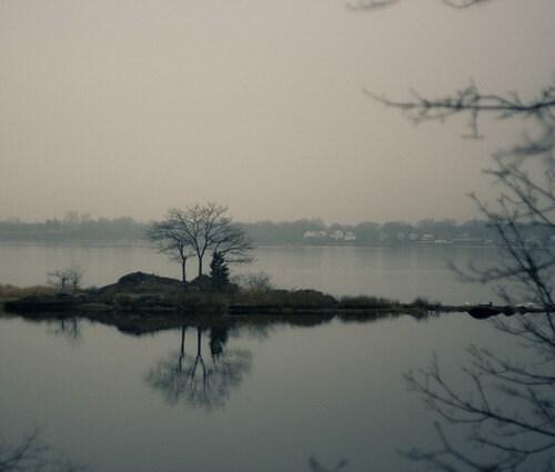 Rain And Fog  (8x8 Fine Art Photograph)