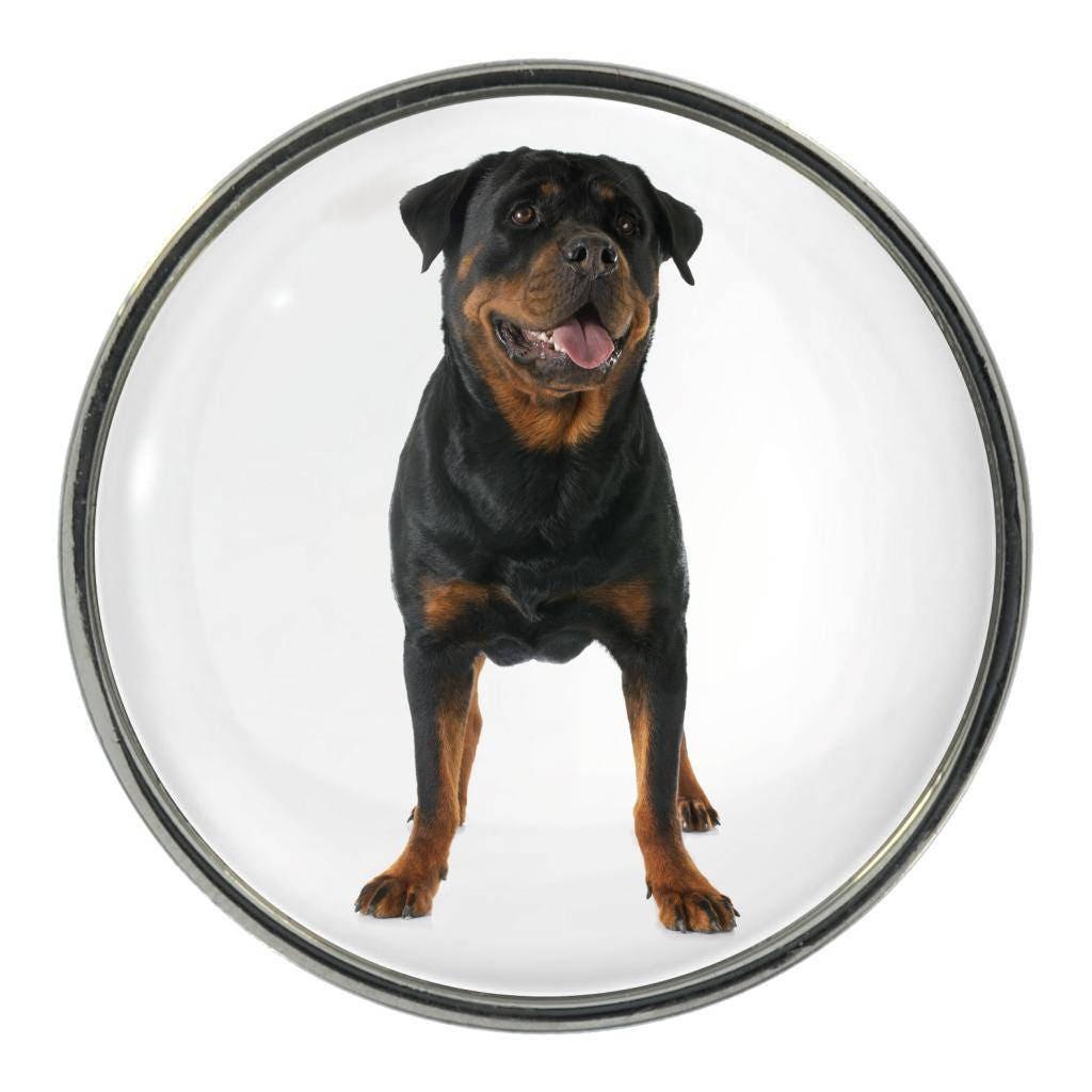 Rottweiler Image On Metal Pin Badge