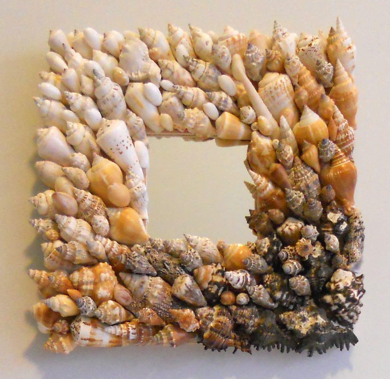 Seashell зеркало открытый всем ветрам и дико красивый 10 х 10 дюймов - WINDY COVE