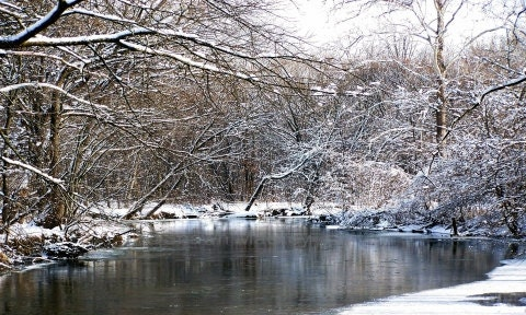 Winter River and Tree Photo Ice and Snow Fine Art Photography - ShawnElizaCreations