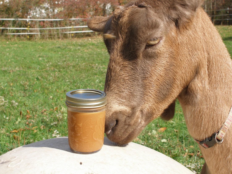 Cajeta Cinnamon- Dulce de leche