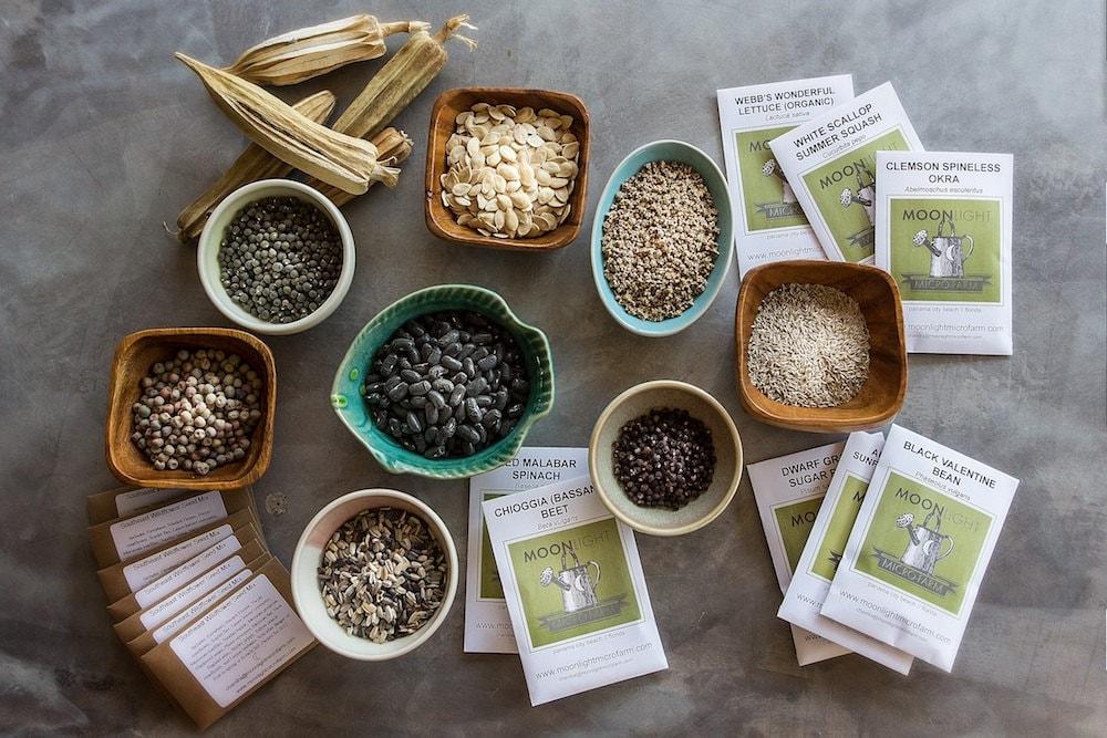 Twenty Packets of Heirloom Seeds - Free Shipping - MoonlightMicroFarm