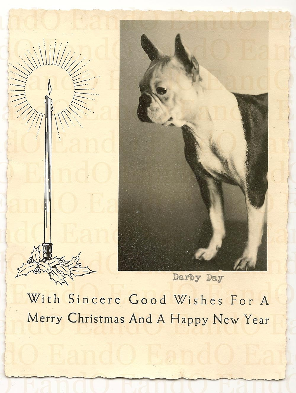 1940s Dog Photo Christmas Card