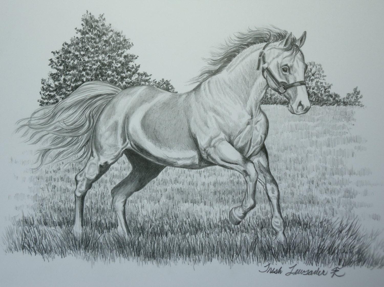 original pencil drawing of a horse running by LuckyDuckyArt - photo#21