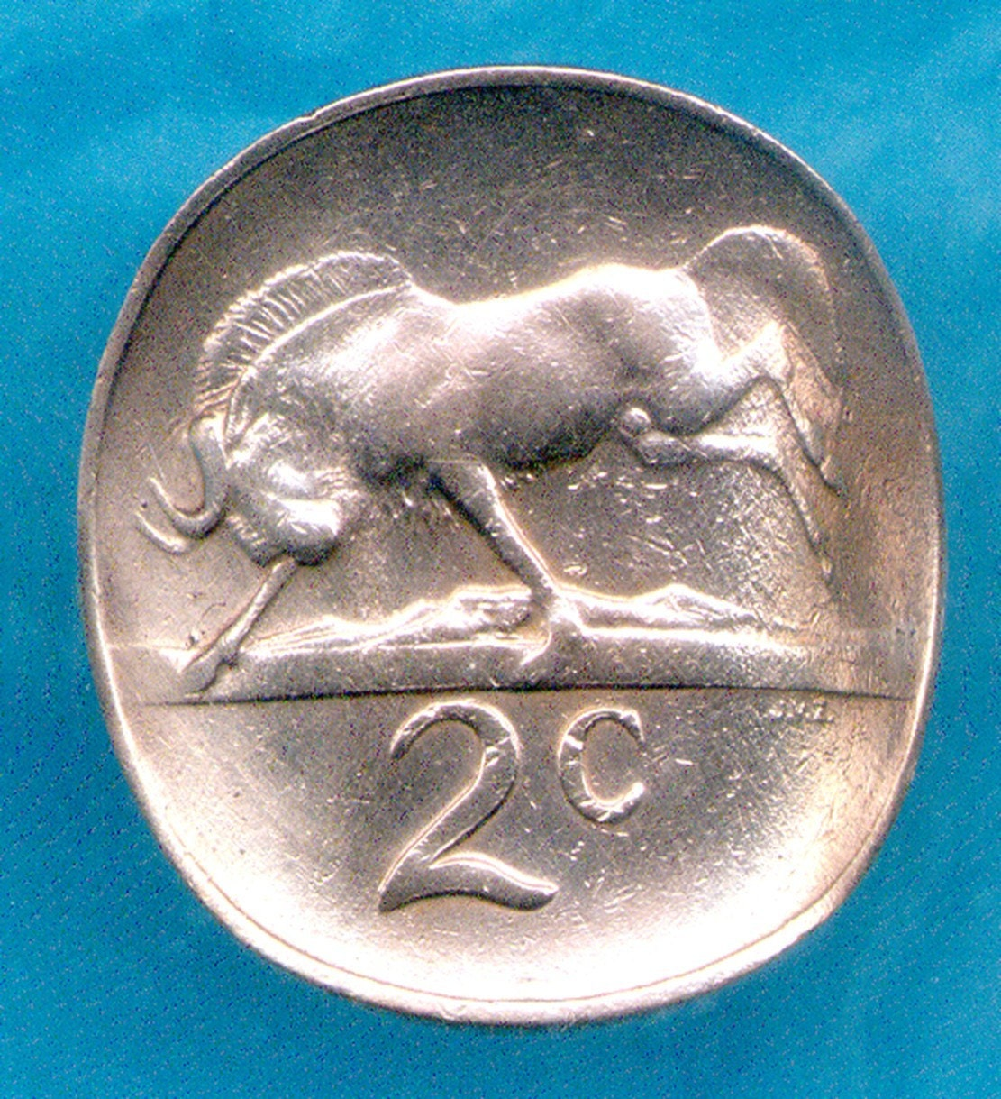 Coin Ring - South Africa (E-155)