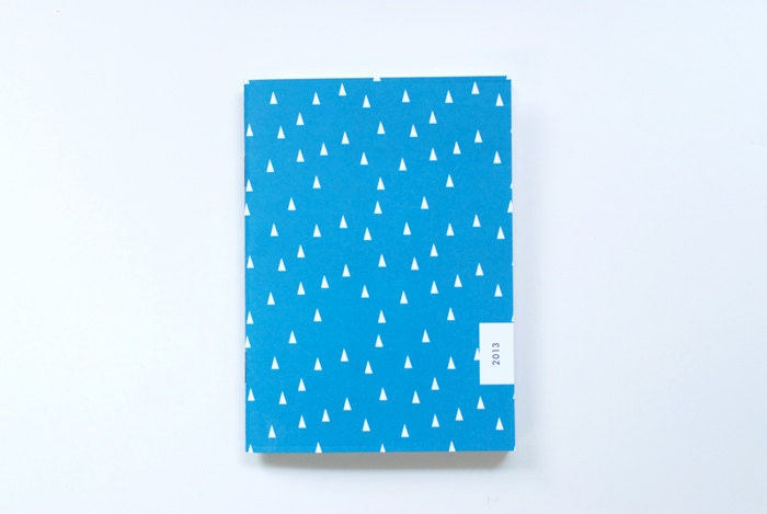 2013 pocket monthly planner - teal forest