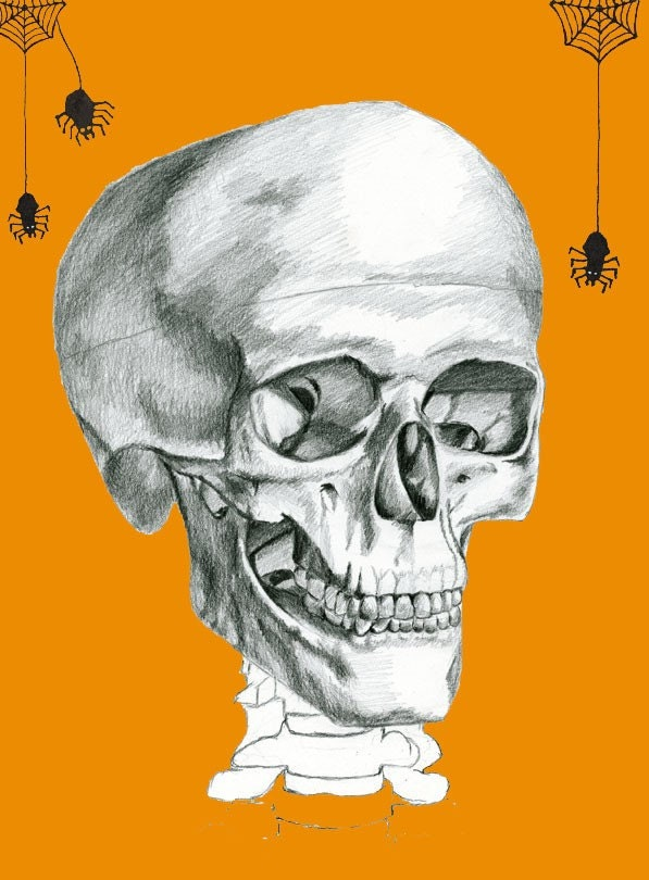 8.5 x 11 Illustration Print - Halloween Skull n' Spider - orange version