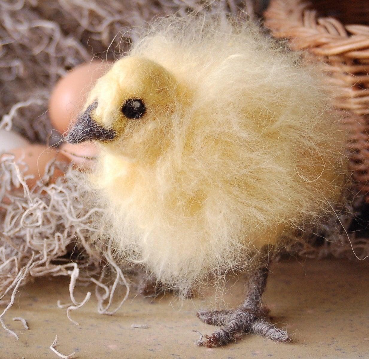 Spring Chick - 3