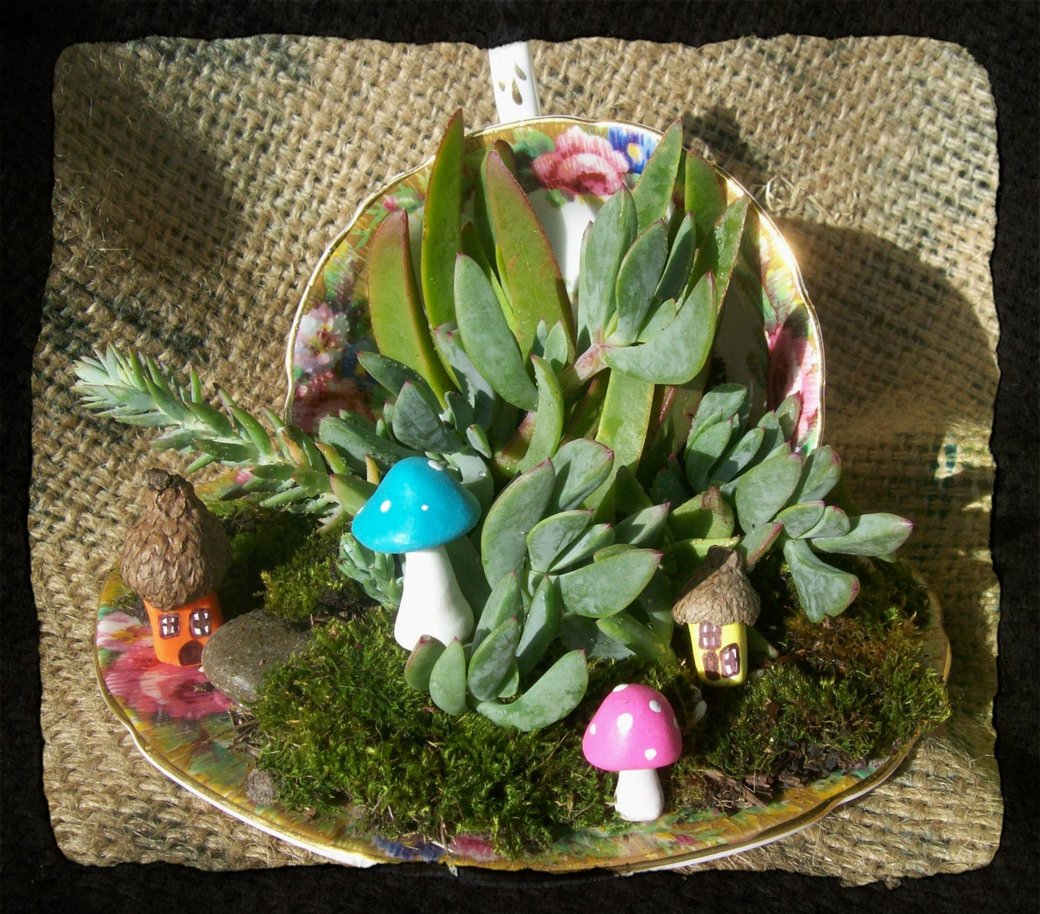 Tea Cup & Saucer Succulent Centerpiece or by NorthrUPCYCLE on Etsy
