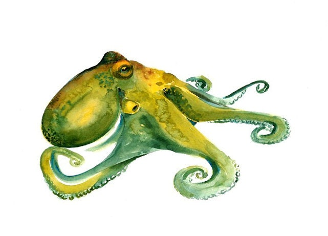 OCTOPUS by DIMDImini ACEO print