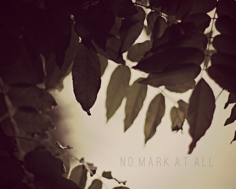 Green Leaves Dream Mist Soft Fog Morning Print - NoMarkAtAll