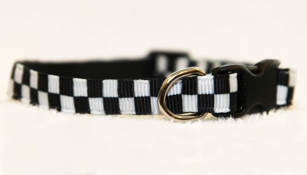 The Checkered - Cat Collar