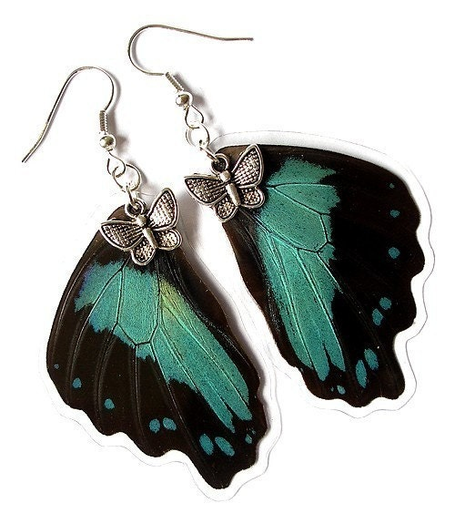 fashion acessories unique earrings real butterfly