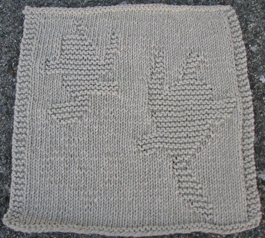 Knit Dishcloth Patterns with Pictures