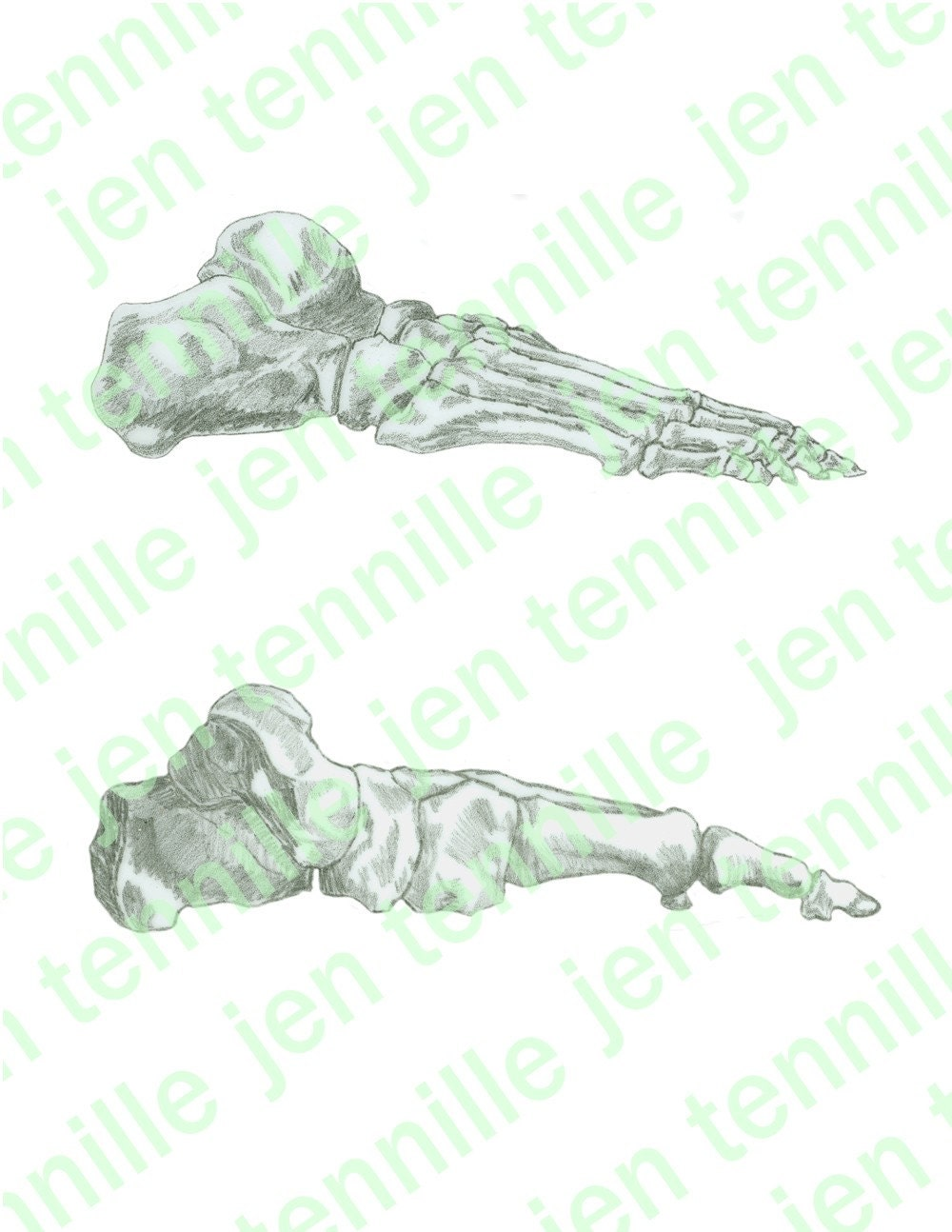 Art And Craft My Body Parts Template