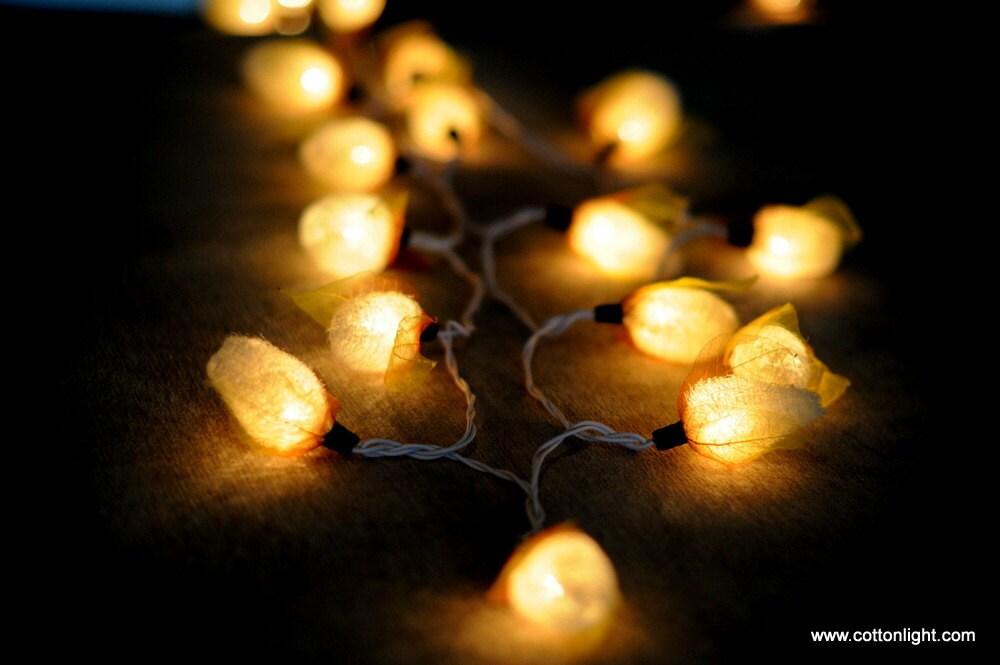 Cream Plant Garden Luffa Sponge indoor string light by cottonlight