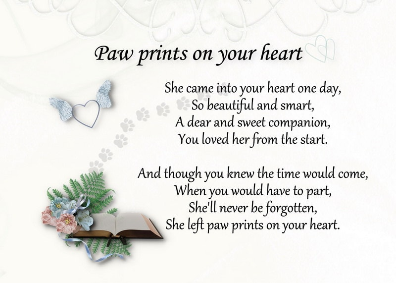 Sympathy dog loss quotes - photo#14