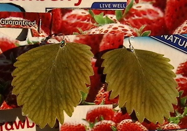 Real Strawberry Leaf and Sterling Silver Simple Earrings  EAWT Folk Reveries STATTEAM etsyLush Upcyclers