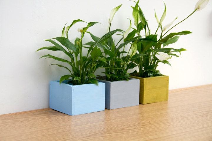 Modern Planters Hand painted Pot Holders, minimalism decor, beach house - ArtGlamourSligo