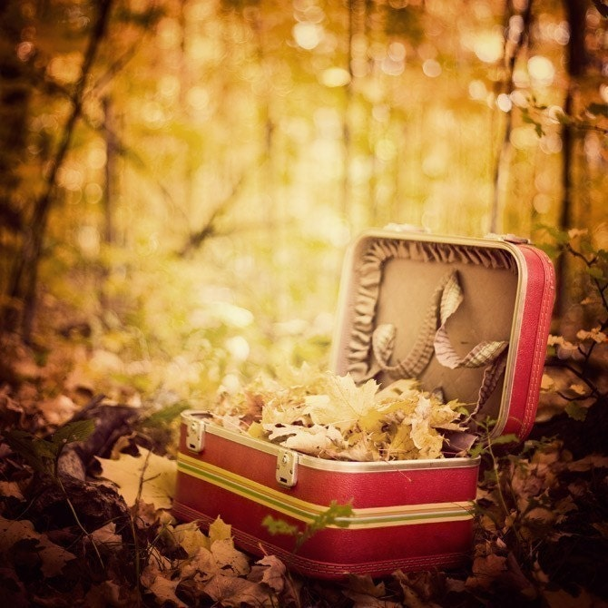 Vintage Red Suitcase, Fall Photography, Yellow Leaves, Forest Print, Forest Photograph, Jewel tones, Thanksgiving - Sentimental Journey - EyePoetryPhotography