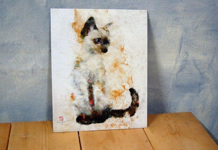 print 8 x10 cat