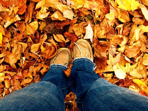 Fall Feet: a fine art nature self-portrait photograph of ground, legs, shoes, and fallen autumn leaves in orange, blue, and brown