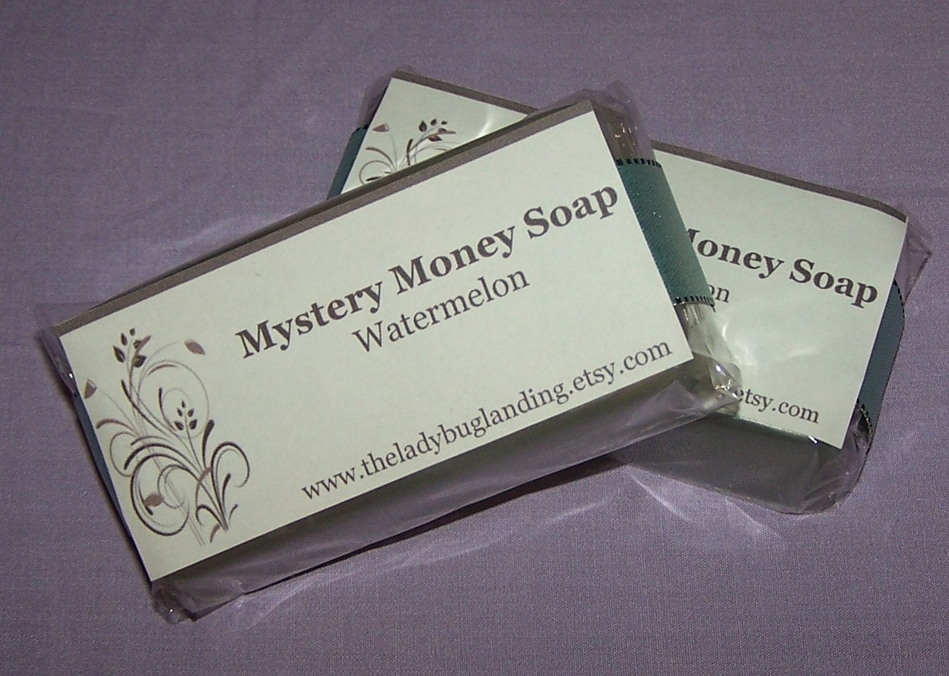 Handmade Real Money Soap Mystery....you choose scent
