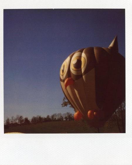 Owl of Air II Original Polaroid