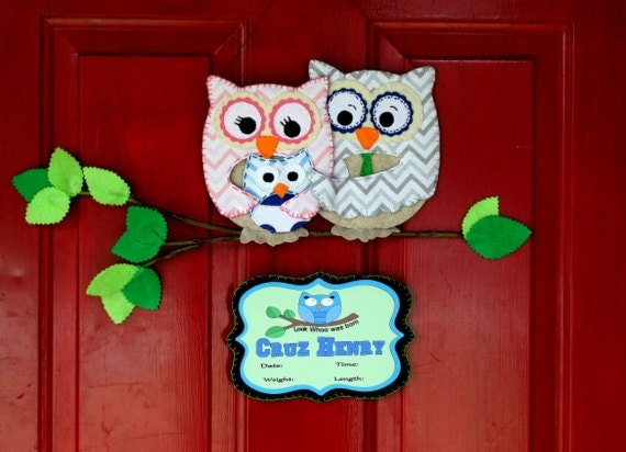 Owl family hospital door hanger by addalilcharmbowtique on for Baby girl hospital door decoration