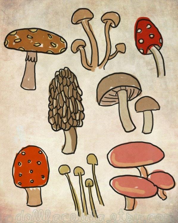 Print - Mushroom Illustration