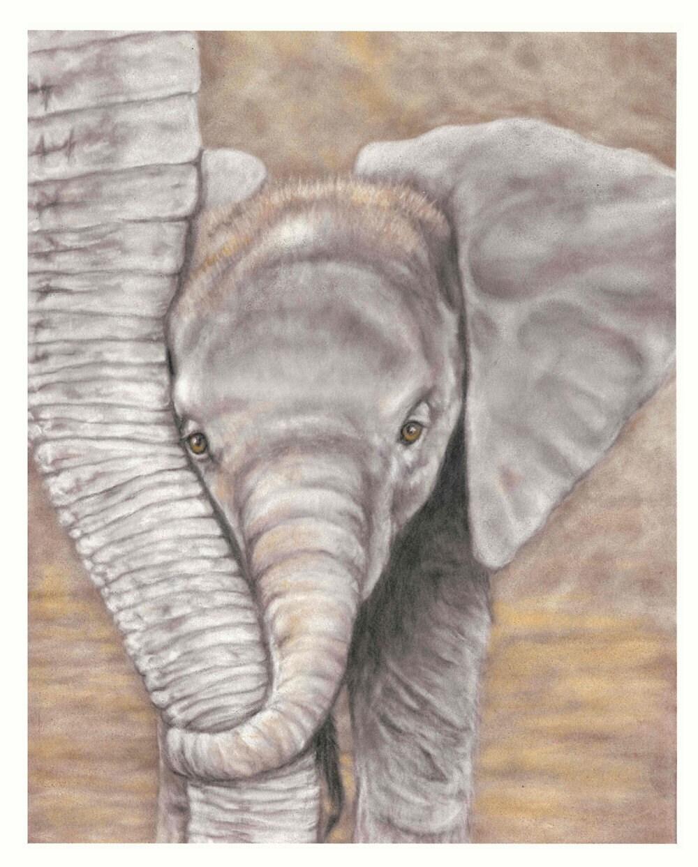 Elephant Calf Print - 5 x 7
