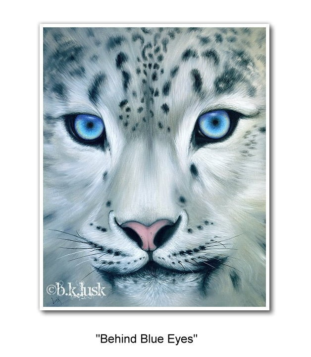 Basic Facts About Snow Leopards  Defenders of Wildlife