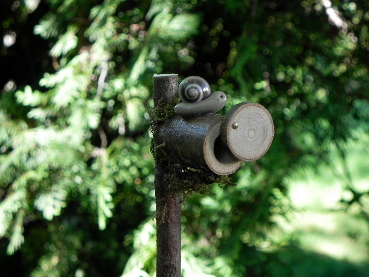 how to clear snails from mailboxes