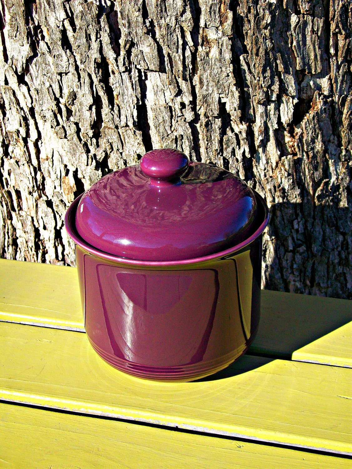 20% OFF SALE Pretty Purple Canister For Kitchen By