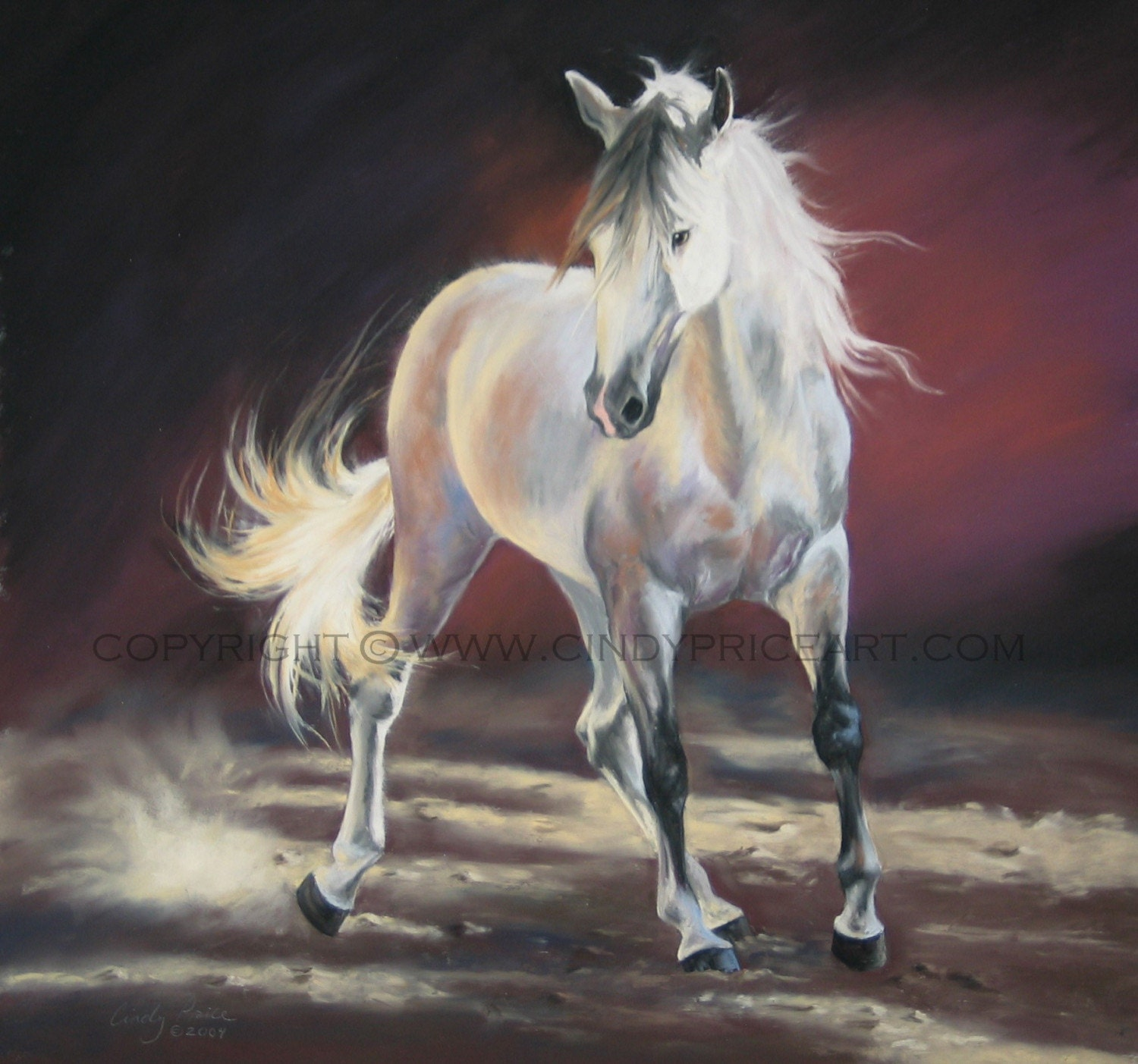 Andalusian Horse Original Pastel painting drawing by Cindy Price equine art