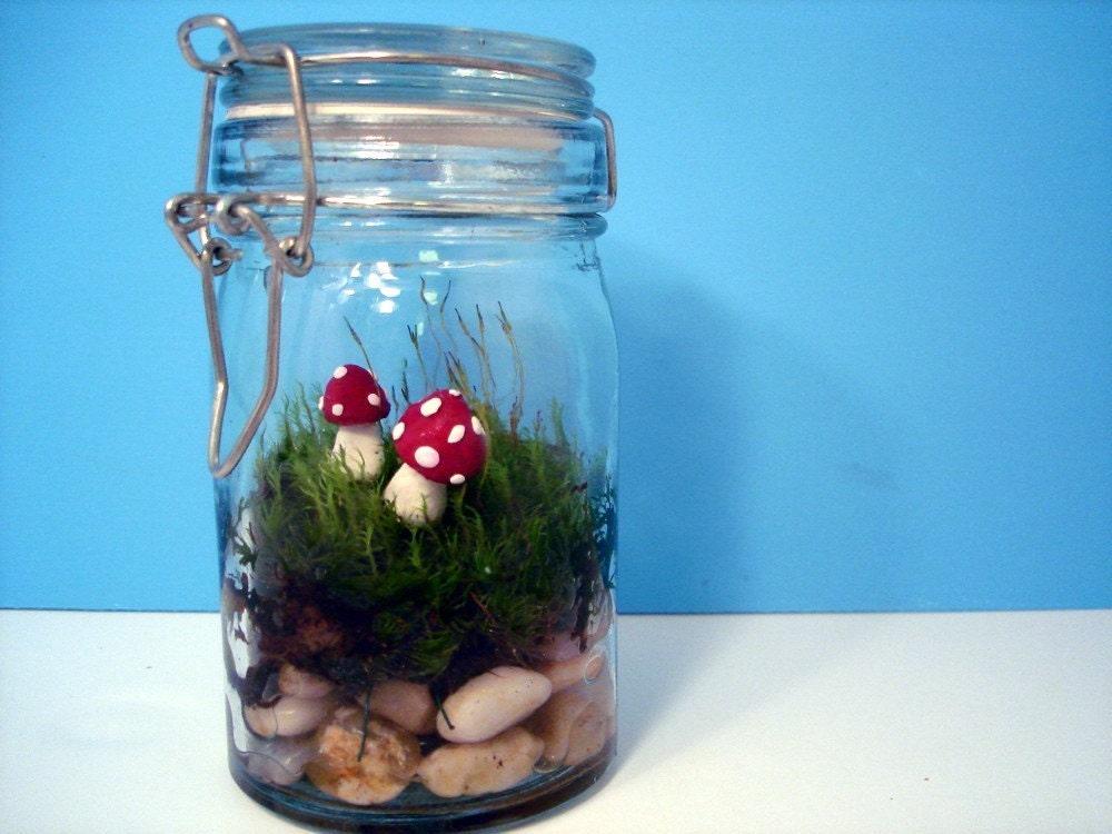 Fairy Toadstool Moss Terrarium
