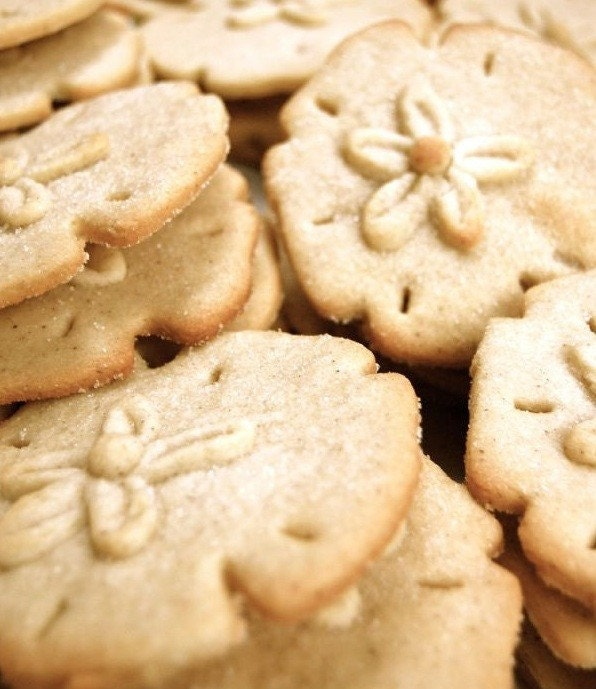 Plum Island Cookie Company Sand Dollar Cookies