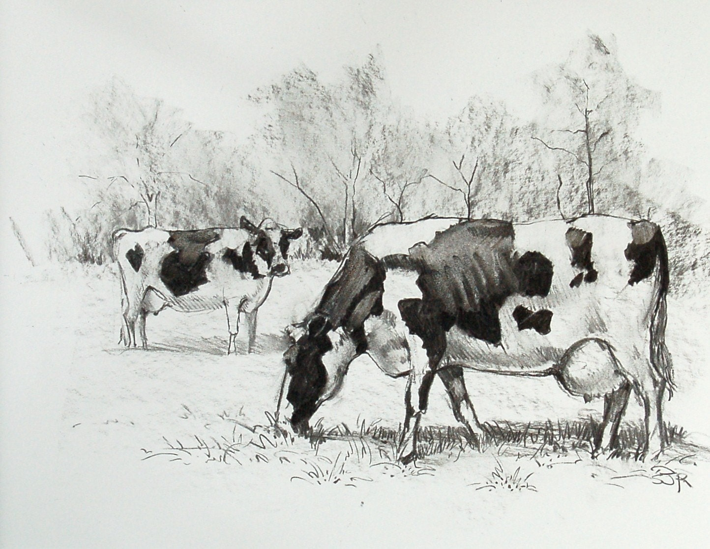 How To Draw Cows Grazing