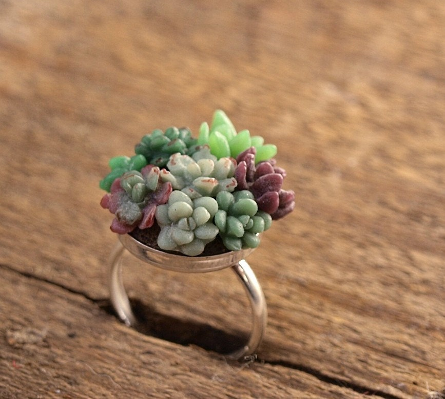 Tiny Succulent Garden Ring